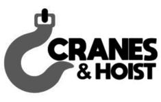 logo cliente Querétaro cranes