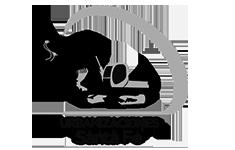 logo cliente Querétaro santafe